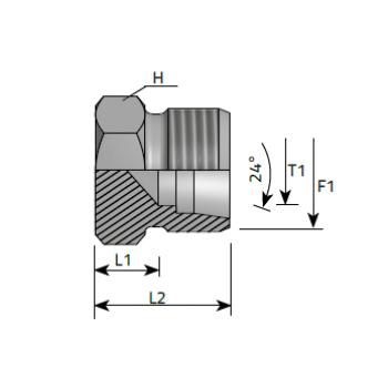 Тапа външна резба, външен шестостен, метрична резба DIN 2353 - конус 24°